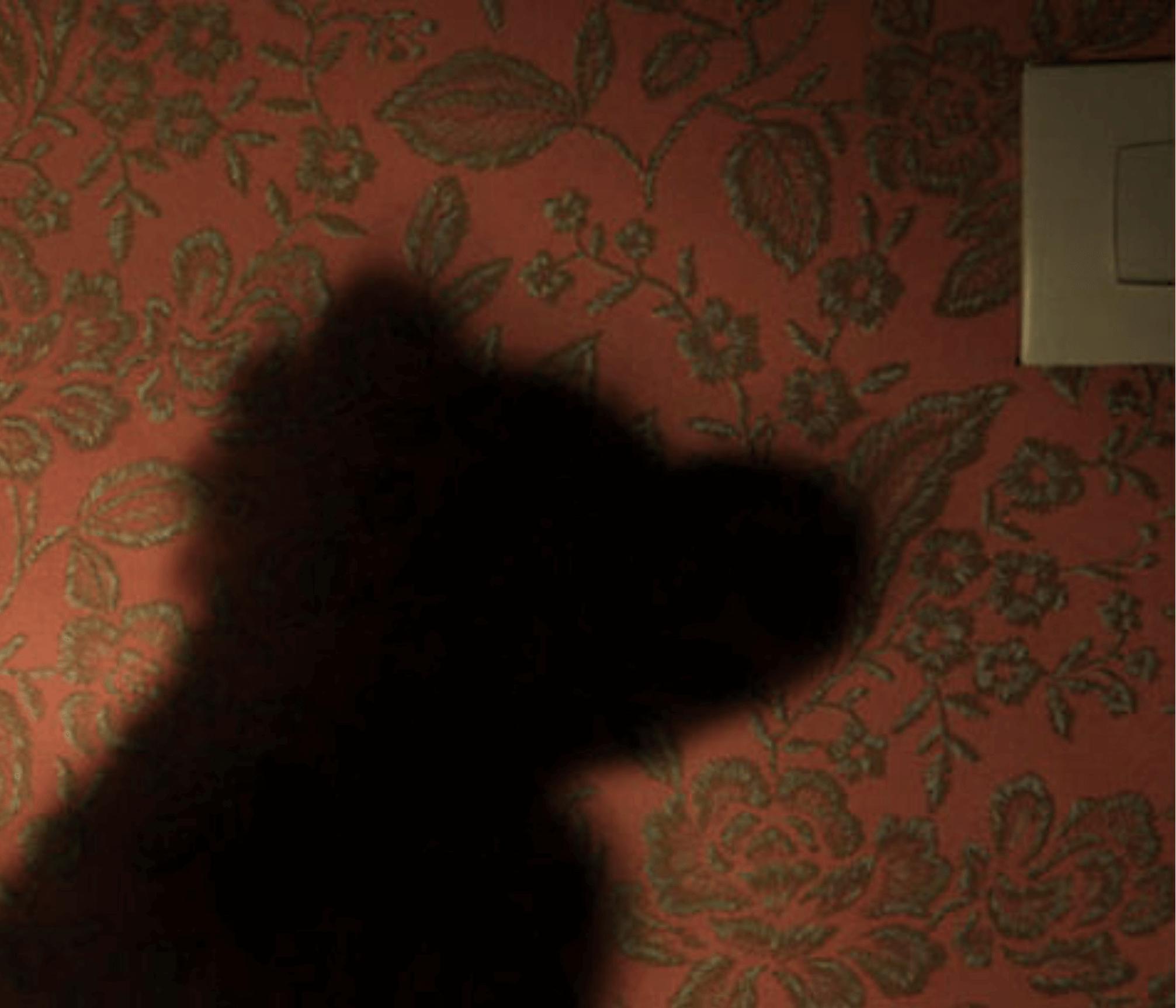 Teddy bear night shadow on a bedroomwall