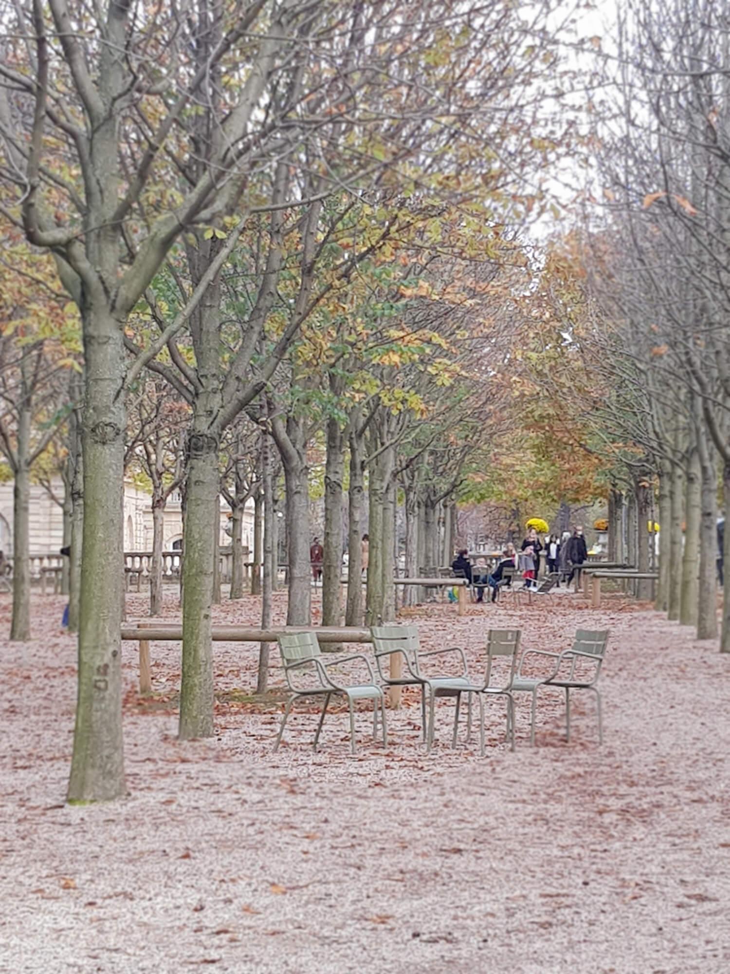 Allée Jardin du Luxembourg